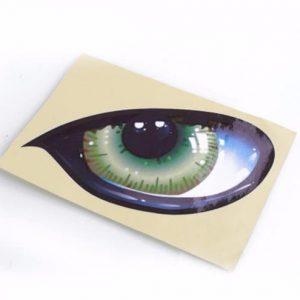 Aufkleber für Rasenroboter- Augen Bild 1