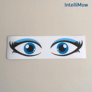 Aufkleber für Rasenroboter, Augen- Mählanie